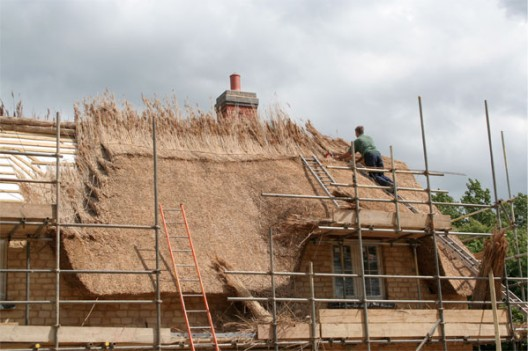 Paul Reading thatching