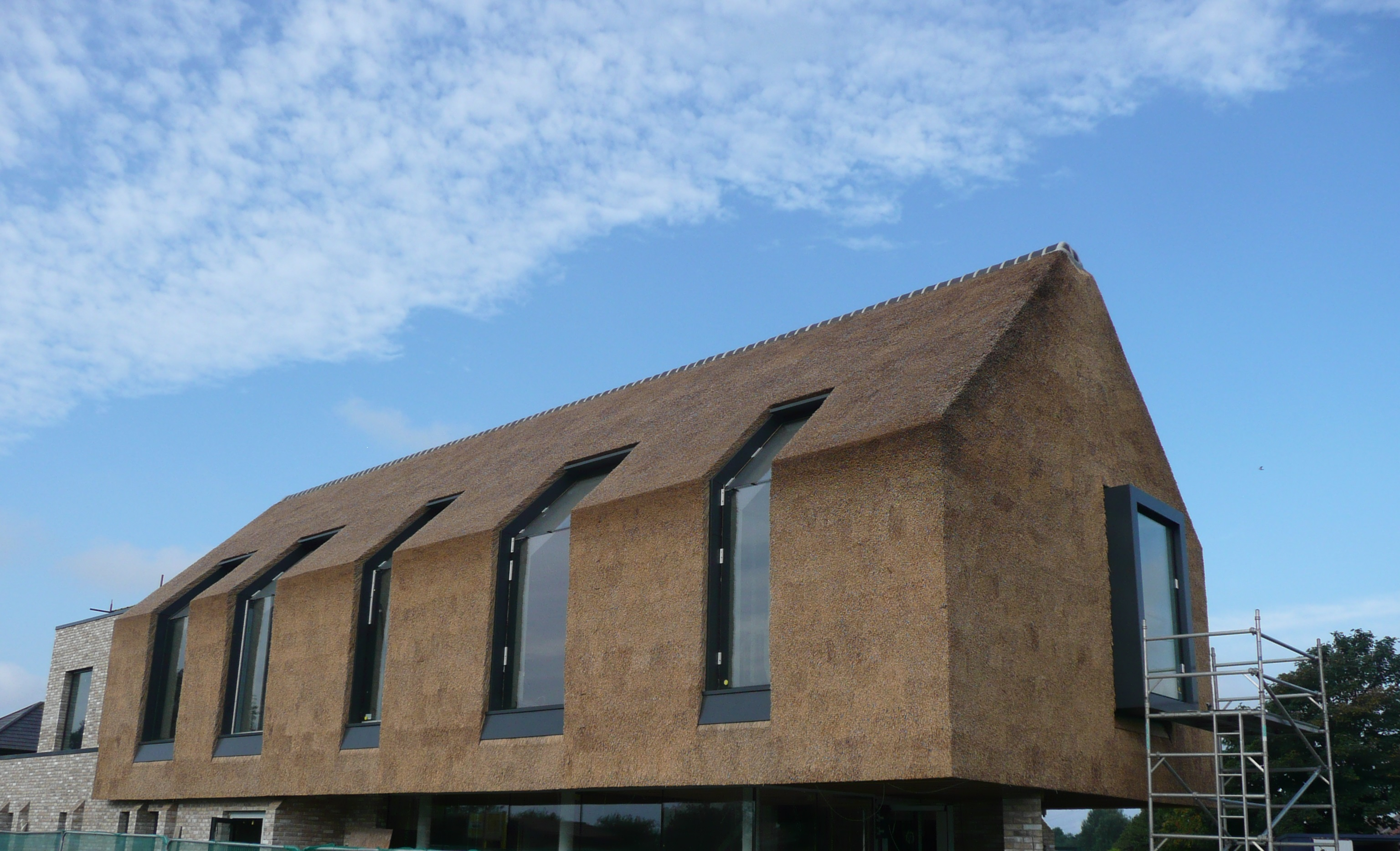 Thatch fire protection for House builder